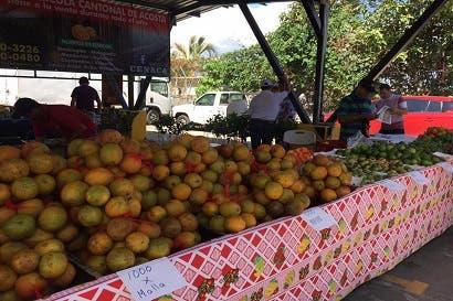 Autoridades exhortan a la población a consumir más frutas