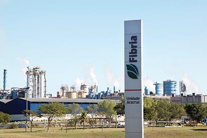 Gigante de la pasta de papel evalúa fusión con rivales en Brasil