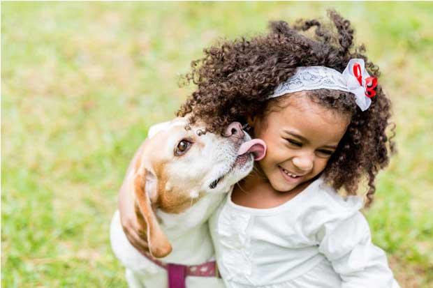 UNA celebra aprobación de Ley de Bienestar Animal