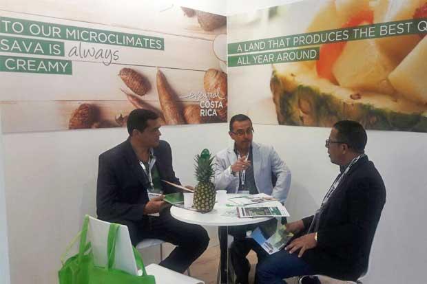 Productos agrícolas ticos se expusieron en Italia