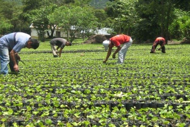 Mipymes contarán con mayor acceso a crédito en las zonas rurales