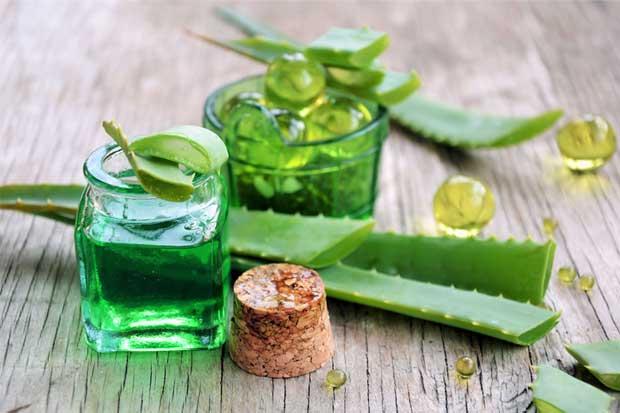 Crece exportación de productos herbales