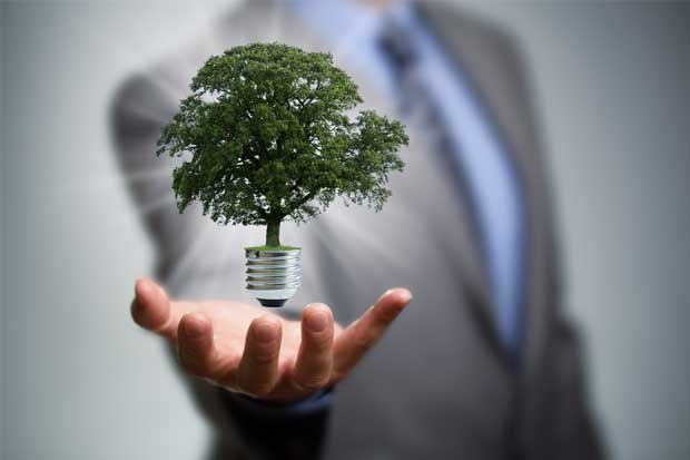 Energías renovables dan trabajo a casi 10 millones de personas