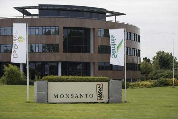 Monsanto ve recuperación de granos a largo plazo sobre demanda
