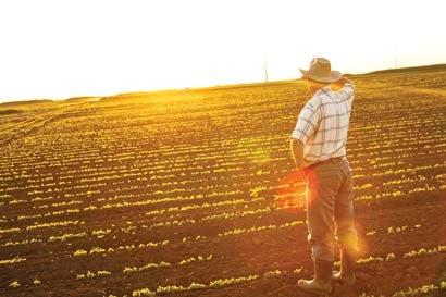 Salarios en zonas rurales son un 43% más bajos que en la ciudad