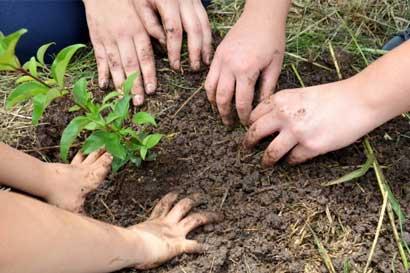 TEC motivará a estudiantes sobre hábitos conservacionistas