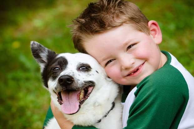 Gobierno invita a ciudadanos a celebrar firma de ley contra maltrato animal este domingo