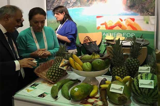 Empresas ticas participan por primera vez en feria London Produce