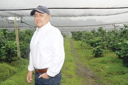Agricultura de precisión avanza entre productores