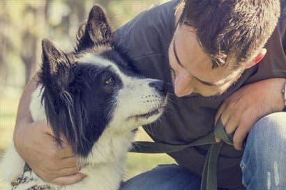 Hoy se firmó ley contra maltrato animal