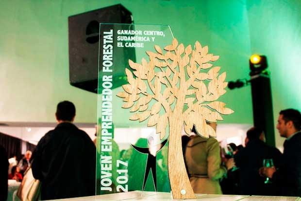 Bolsos de madera ticos obtuvieron segundo lugar en concurso internacional