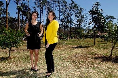Se inicia programa de rearborización de La Sabana