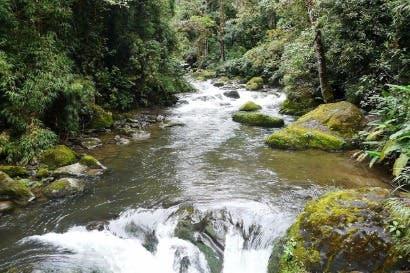 Savegre es declarada nueva Reserva de la Biosfera para Costa Rica