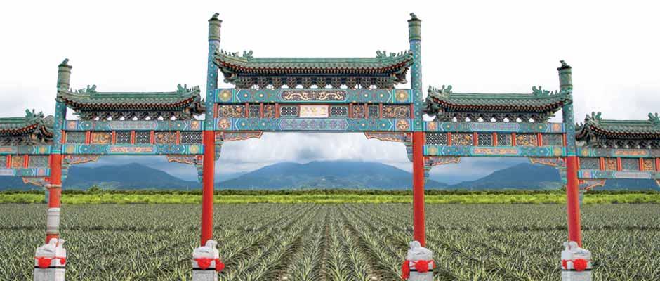 Objetivo China: Piña busca balance comercial entre países