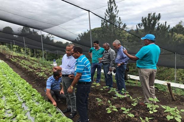 República Dominicana y Costa Rica compartirán estrategias para la producción alimentos