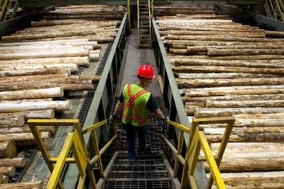 EE.UU. impondrá más aranceles a madera canadiense importada