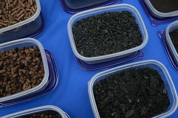 Ingenieros de la UCR procesan broza del café y producen electricidad