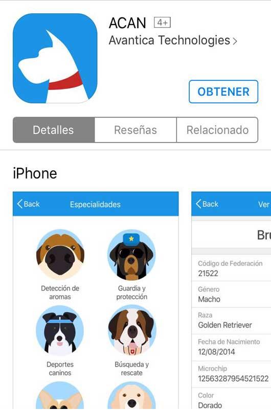 201706301541410.aplicacion.jpg