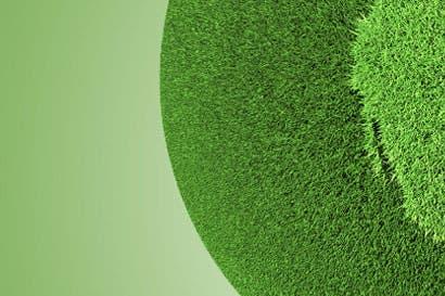 Diputado propone incluir educación ambiental en escuelas y colegios