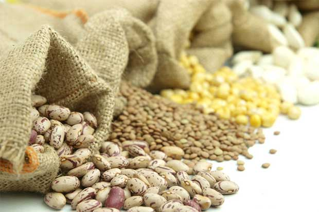 Banco de Alimentos realizará campaña de recolección