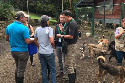 Territorio de Zaguates: El nombre Senasa les queda muy grande