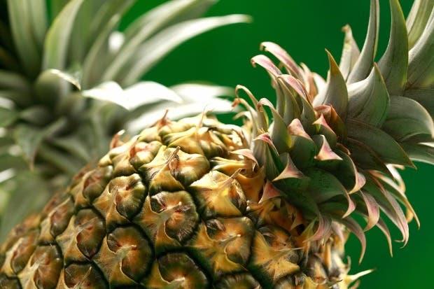 Piña costarricense será producida y vendida de forma responsable
