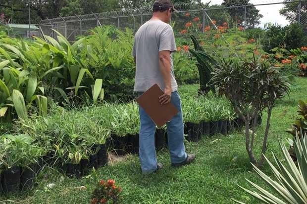Privados de libertad adornarán carretera a Liberia con plantas autóctonas