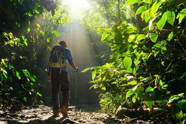 Celebración del Día de los Parques Nacionales requiere voluntarios