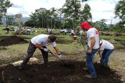Parque Metropolitano La Sabana tendrá 86 nuevos árboles