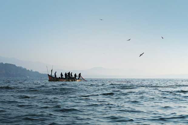 Marviva pide autoridades sancionar casos de pesca ilegal de camarón
