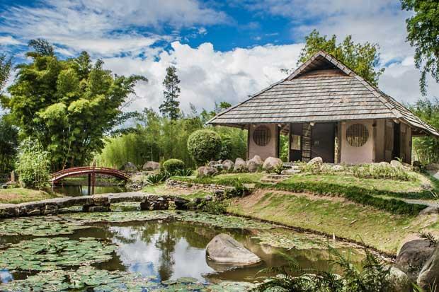 Jardín Botánico Lankester se renueva con centro de investigación de orquídeas