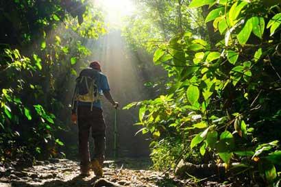 ONG's podrán colaborar en parques del SINAC