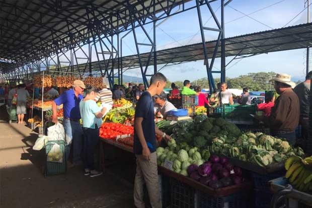 Ferias del agricultor nacionales servirán de ejemplo en otros países