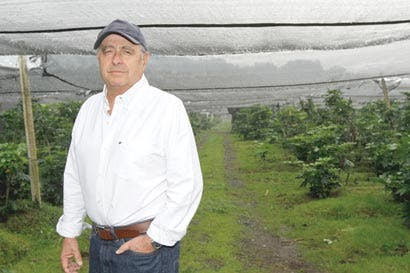 Productores agrícolas piden facilitar contratación de extranjeros
