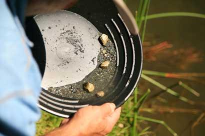 Preservacionistas piden tomar medidas ante contaminación en Crucitas