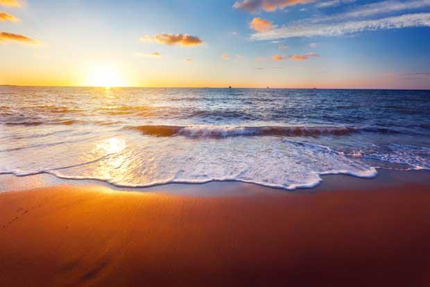 Jornadas de voluntariado limpiarán playas y parques del país