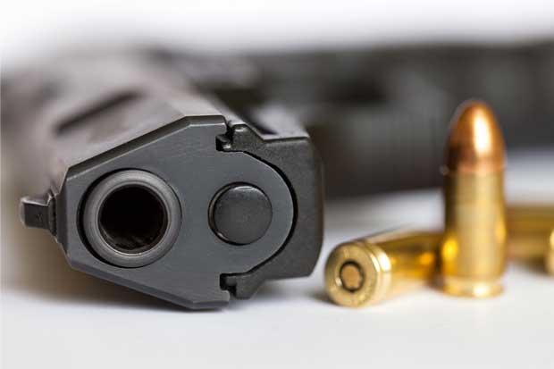 Colegio de Psicólogos apoya disminución de armas por persona
