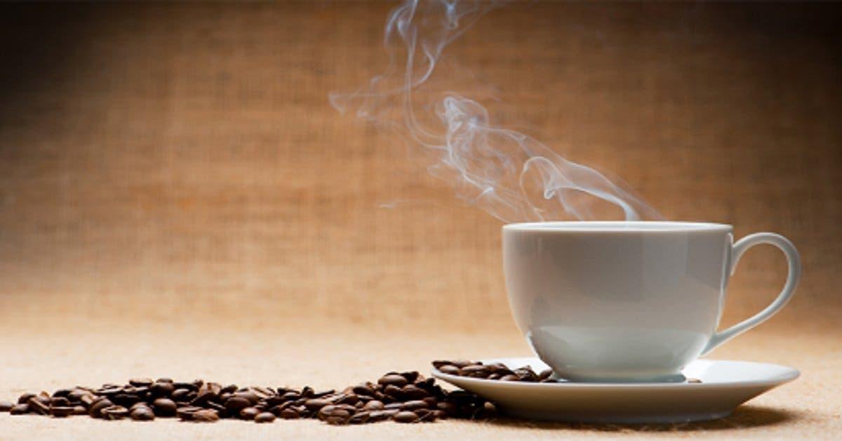 Café tostado costarricense se comercializaría en Alemania