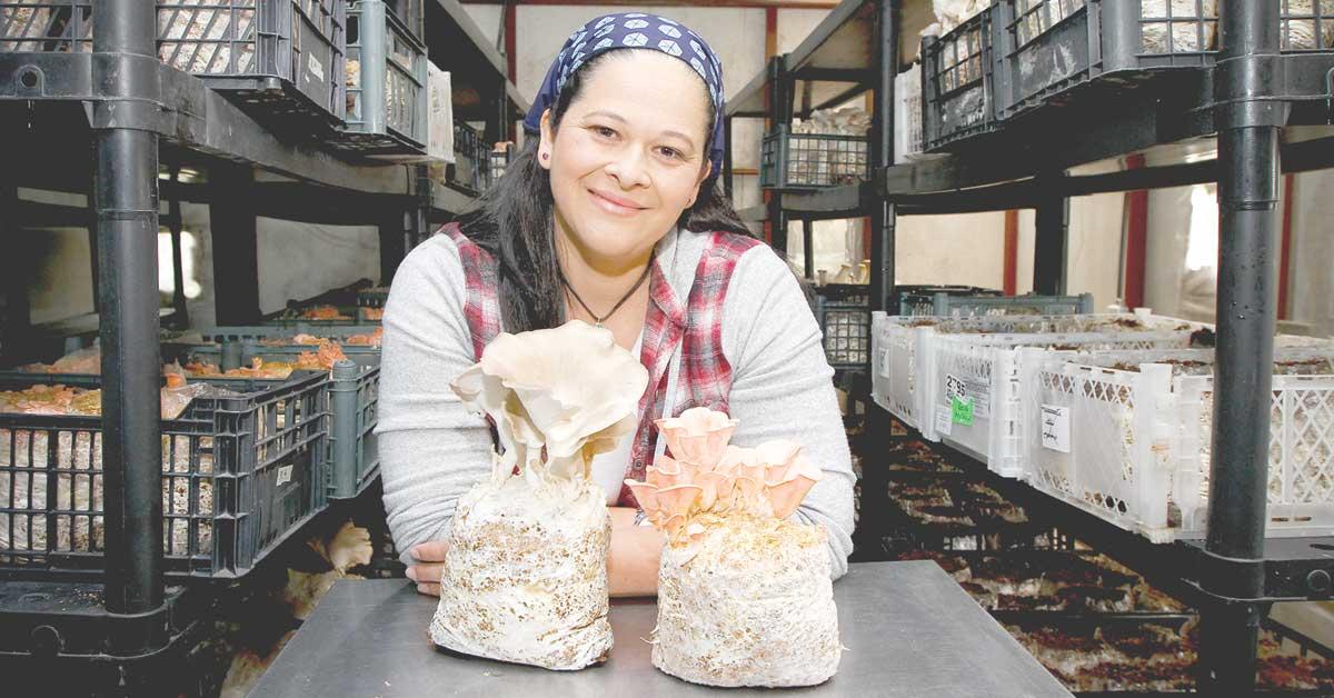 Hongos se convierten en oportunidad para microempresaria