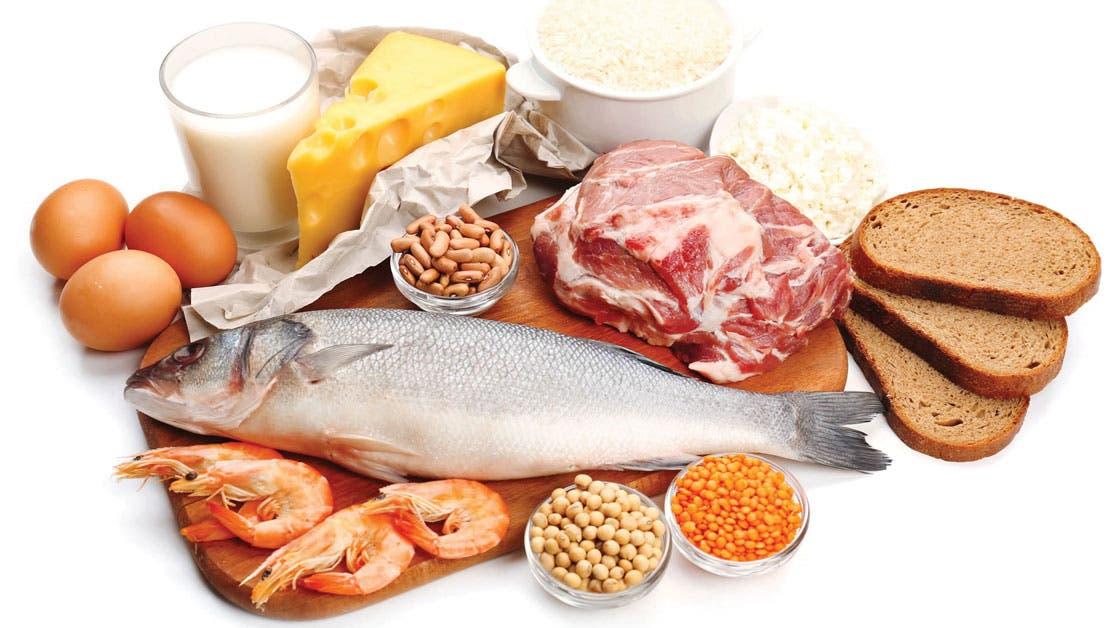 Proteínas, un aliado indispensable para su salud