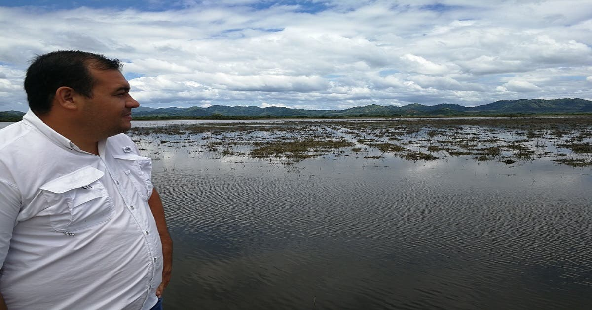 Más de 7 mil hectáreas de arroz fueron afectadas por Nate