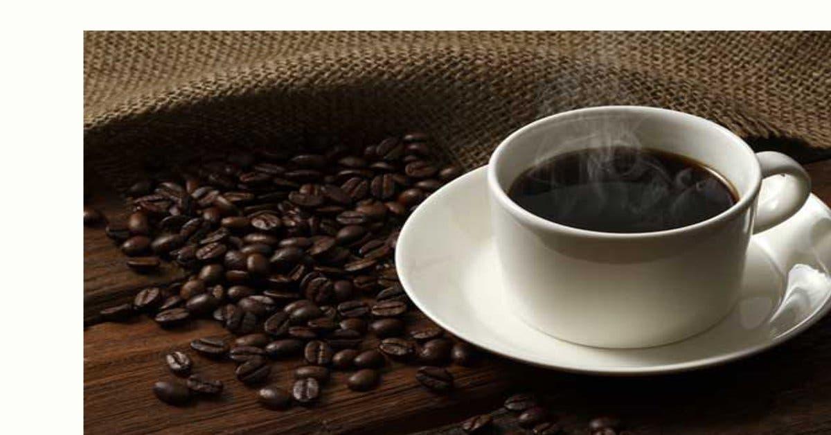 Costa Rica avanza en la producción de café sostenible