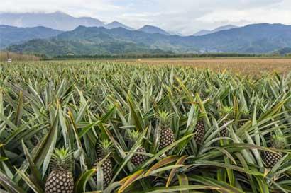 Piñera Valle Verde denuncia campaña de desprestigio en su contra