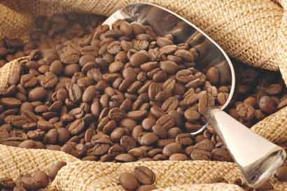 Café robusta cae a mínimo de 14 meses por buenas cosechas