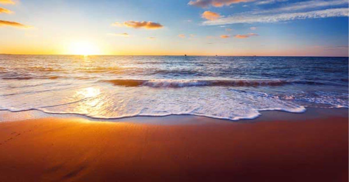 Organizaciones turísticas unen esfuerzos para activar mercado interno