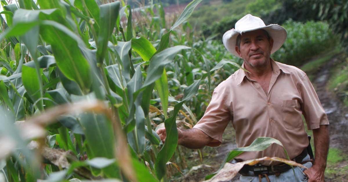 Proyecto condonaría deudas de agricultores afectados por desastres naturales