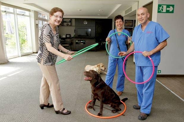 Trate el alzhéimer y demencias con ayuda de un perro
