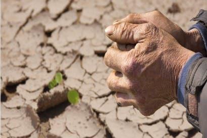 Sector agropecuario incorpora estrategia para combatir el cambio climático