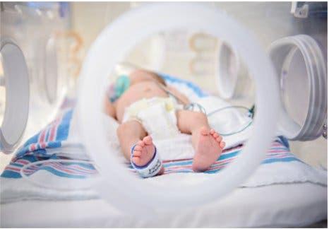 Pampers innova con pañal para prematuros