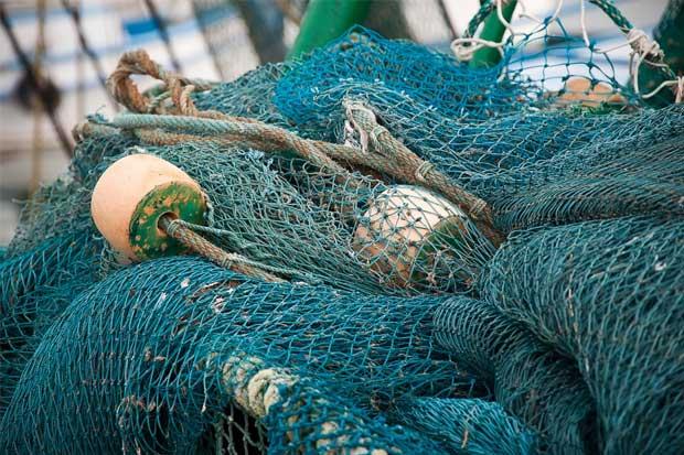 Diputada duda de sostenibilidad de la pesca de arrastre